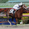 Abraham - Maiden win, Gulfstream Park, February 16, 2013<br /> Coglianese Photos/Courtney Heeney