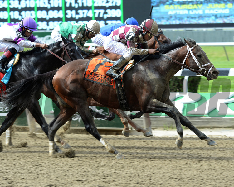 Forty Tales wins the 2013 Woody Stephens.<br /> Coglianese Photos