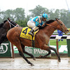 Calidoscopio wins the 2013 Brooklyn Handicap.<br /> Coglianese Photos