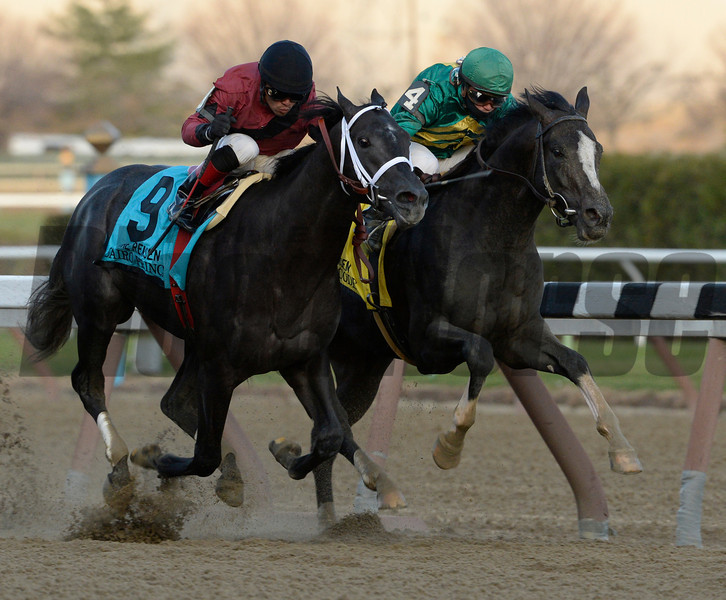 Honor Code, right, out duels Cairo Prince to the win in the 100th running of The Remsen at Aqueduct Nov. 30, 2013, in Ozone Park, N.Y.  Photo ©Skip Dickstein 2013
