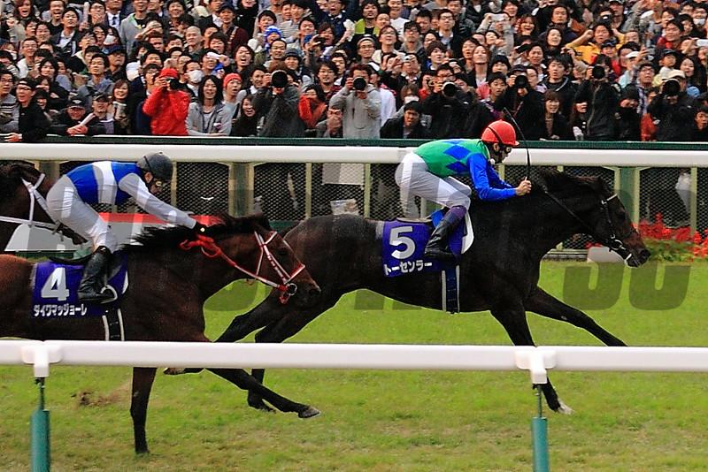 Tosen Ra wins the Mile Championship at Kyoto Racecourse, Japan.<br /> Naoji Inada Photo