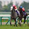 Gold Ship wins the Takarazuka Kinen.<br /> Masakazu Takahashi Photo