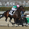 Close Hatches, Joel Rosario up, wins the Gazelle (gr. II) at Aqueduct.<br /> Coglianese Photos/David Alcosser