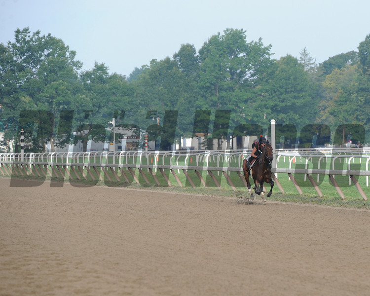 Orb works at Saratoga 8/19/2013. Coglianese Photos/Susie Raisher