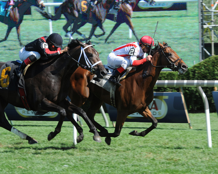 Balance the Books wins the 2013 Stroll.<br /> Coglianese Photos