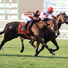 Little Mike wins the 2013 Joe Hirsch.<br /> Coglianese Photos/David Alcosser