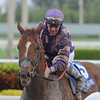 Heart Stealer wins the 2013 Sugar Swirl.<br /> Coglianese Photos/Lauren King