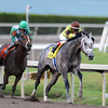 Graydar wins the 2013 Donn Handicap.<br /> Coglianese Photos/Eleanor Gustafson