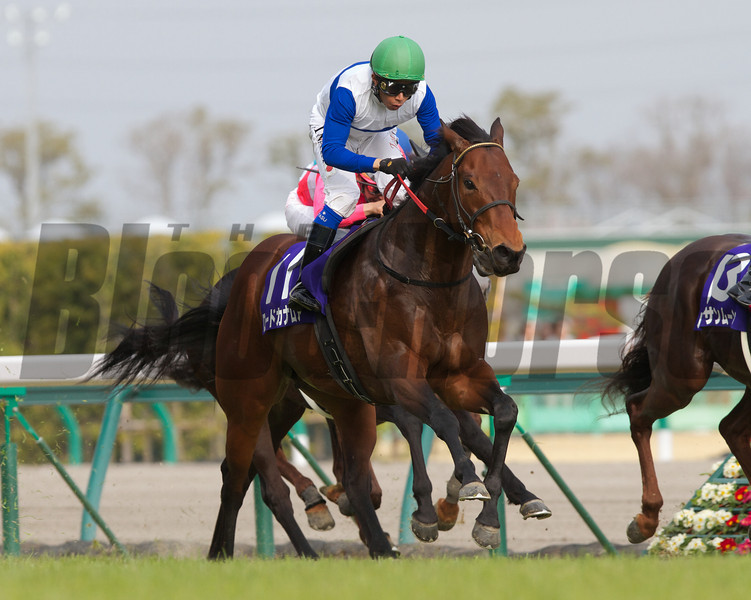 Lord Kanaloa wins the Takamatsunomiya Kinen