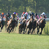Up With the Birds wins the 2013 Jamaica.<br /> Coglianese Photos
