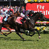 Fiorente wins the Melbourne Cup<br /> Mark Gatt Photo