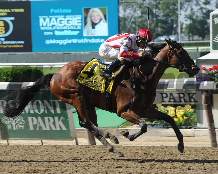 Readtheprospectus wins the 2013 Commentator.<br /> Coglianese Photos