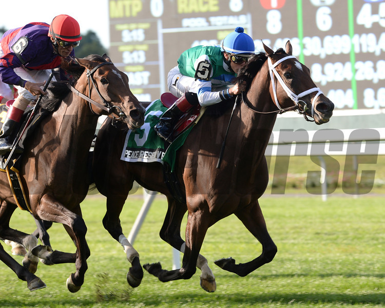 Peace Preserver wins the 2013 Noble Damsel.<br /> Coglianese Photos