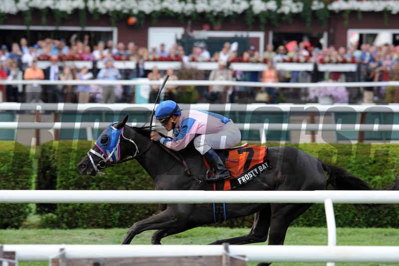 Frosty Bay wins the 2013 Statue of Liberty. <br /> Coglianese Photos/Adam Mooshian