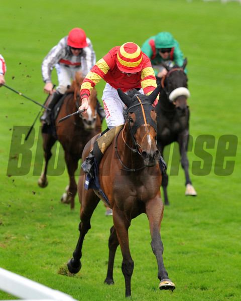 Seal of Approval, George Baker up, wins the Fillies & Mares Stakes British Champions Day, Ascot Racecourse, England, 10/19/13, photo by Mathea Kelley