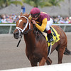Discreet Dancer wins the 2013 Gulfstream Park Handicap.<br /> Coglianese Photos/Kenny Martin