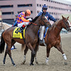 Summer Applause, John Velazquez up, Gr.2 Top Flight at Aqueduct for trainer Chad Brown<br /> © 2013 Rick Samuels/The Blood-Horse