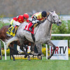 Inimitable Romanee wins the 2013 Long Island.<br /> Coglianese Photos/Adam Mooshian