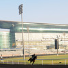 sunrise, Meydan, March 28th, 2013, photo by Mathea Kelley, Dubai World Cup 2013,