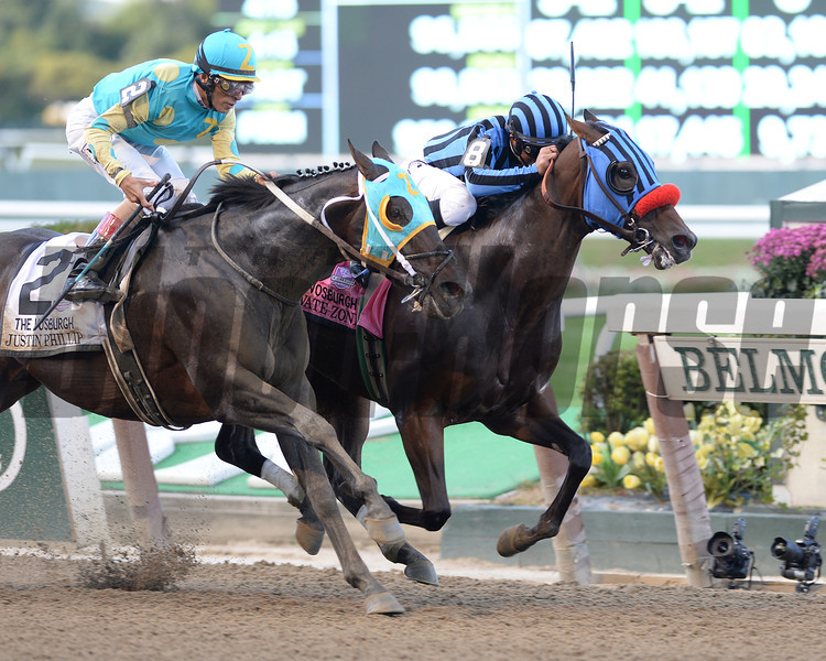 Private Zone wins the 2013 Vosburgh.<br /> Coglianese Photos/David Alcosser