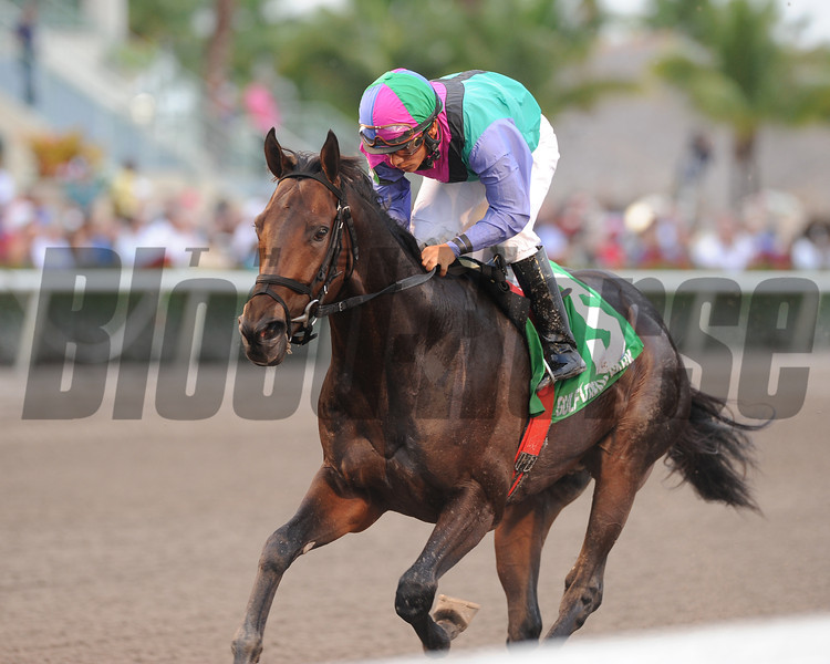 Itsmyluckyday wins the 2012 Gulfstream Park Derby.<br /> Coglianese Photos/Kenny Martin