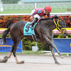 Off the Jak wins the 2013 Sunshine Millions Sprint.<br /> Coglianese Photos/Courtney Heeney