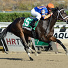 Stopchargingmaria wins the Tempted Stakes 11/3/2013.<br /> Coglianese Photos