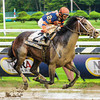 Notacatbutallama wins the National Museum of Racing Hall of Fame Stakes (gr. 2)<br /> Jockey: John Velazquez<br /> SARATOGA, Saratoga Springs, NY<br /> Purse: $200,000<br /> Date: August 9, 2013<br /> Class: Grade 2<br /> TV: HRTV/TVG<br /> Age: 3 yo<br /> Race: 8<br /> Distance: One And One Sixteenth Miles<br /> Post Time: 4:47 PM<br /> Photo by: Adam Coglianese/NYRA