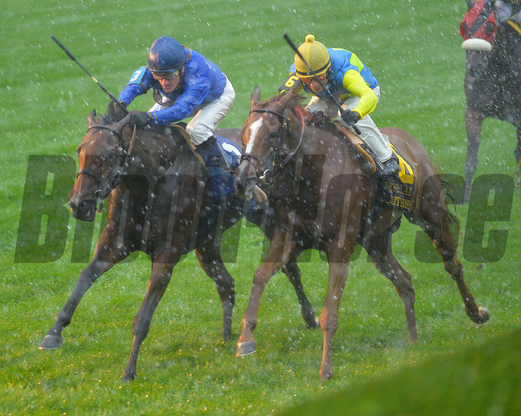 Better Lucky, Julien Leparoux up (all blue silks), wins the First Lady Stakes, Keeneland Race Course, Lexington, KY, 10/5/13, photo by Mathea Kelley;