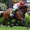 Stephanie's Kitten wins the Distaff Mile.<br /> Photo by Dave Harmon