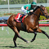 Varsity wins the 2013 Gulfstream Park Turf Sprint Stakes.<br /> Coglianese Photos/Courtney Heeney