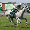 Discreet Marq wins the 2013 Eventail Stakes.<br /> Coglianese Photos/Joe Labozzetta