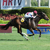 Miss Besilu Maiden Win, December 7, 2013.<br /> Coglianese Photos