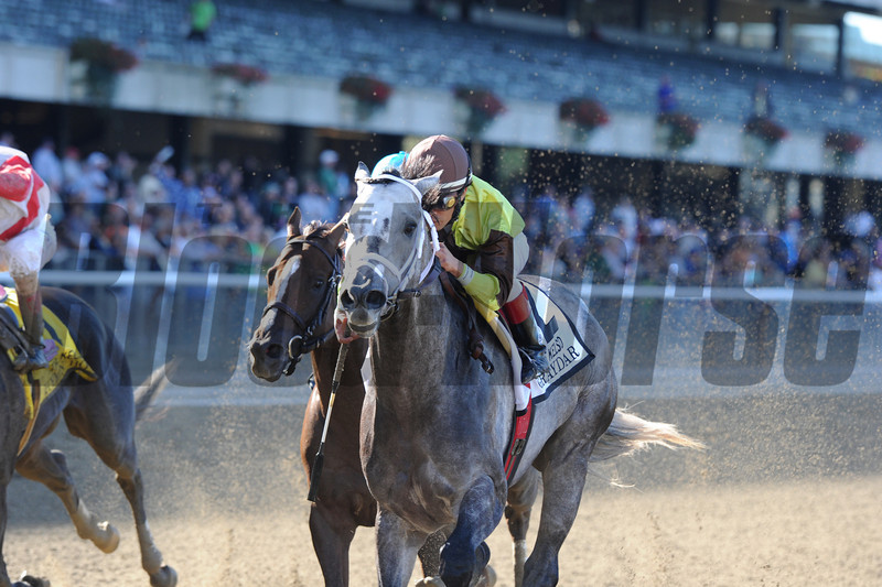 Graydar wins the 2013 Kelso.<br /> Coglianese Photos