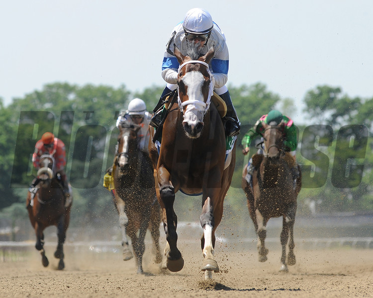 Lovely Syn wins the 2013 Bouwerie.<br /> Coglianese Photos