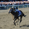 Capo Bastone wins the 2013 King's Bishop.<br /> Coglianese Photos