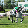 Discreet Marq wins the Sands Point Stakes.<br /> Photo by Coglianese Photos/Chelsea Durand