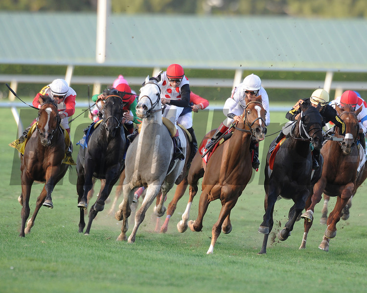Data Link wins the 2013 Canadian.<br /> Coglianese Photos