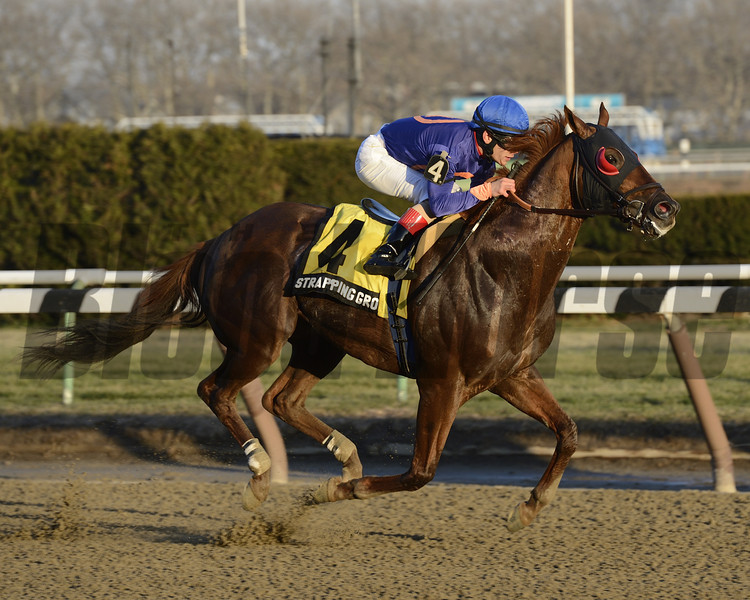 Strapping Groom wins the 2013 Gravesend.<br /> Coglianese Photos