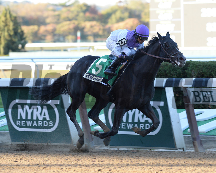 Clearly Now wins the 2013 Bold Ruler.<br /> Coglianese Photos