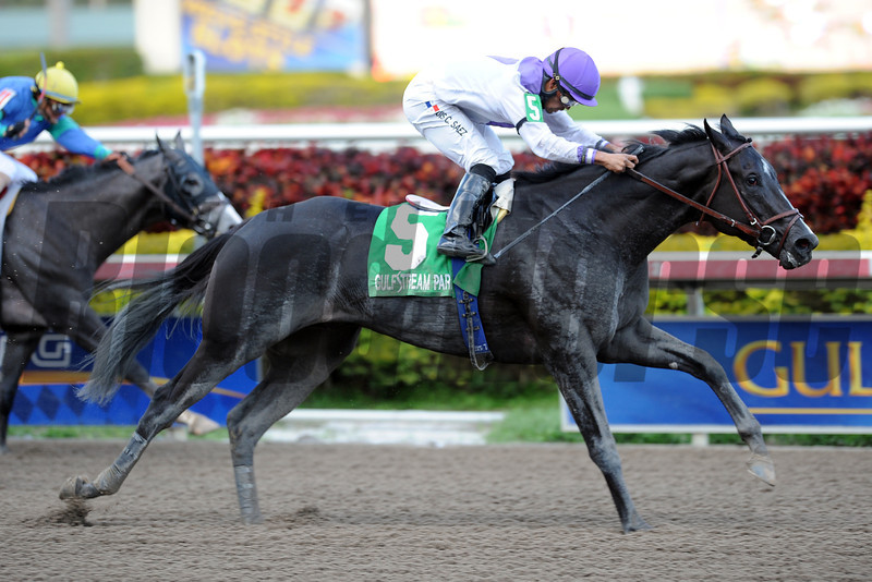 Clearly Now wins the 2013 Swale Stakes.<br /> Coglianese Photos/Courtney Heeney
