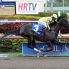 Aubby K wins the Inside Information.<br /> Coglianese Photos/Leslie Martin