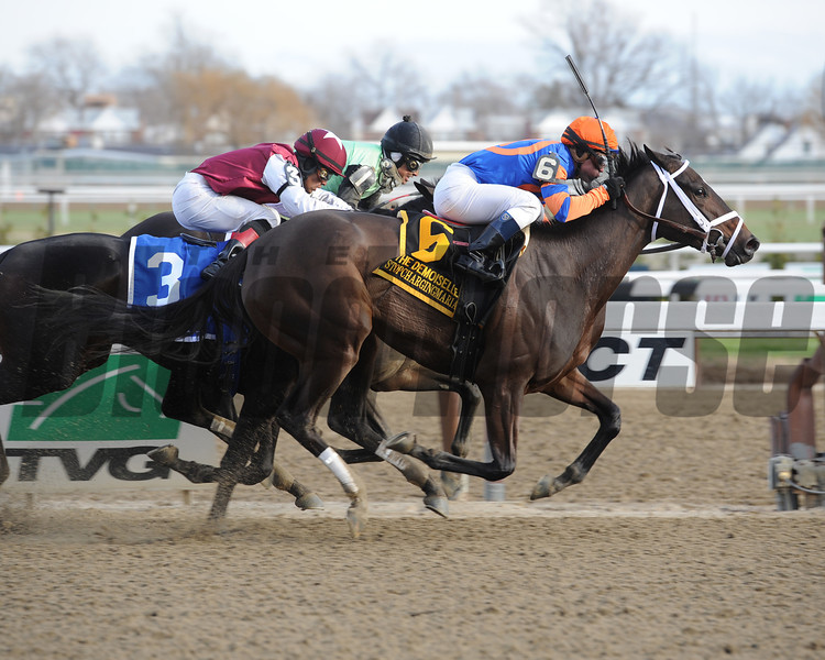 Stopchargingmaria, the 9-10 favorite in the six-horse field for the Grade II Demoiselle Stakes came with a sustained run down the Aqueduct Racetrack stretch to win by a neck over Got Lucky.<br /> Photo by: Adam Coglianese