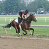 Orb works on 8/19/2013<br /> Coglianese Photo