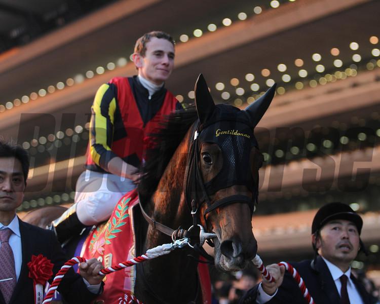 Gentildonna wins the 2013 Japan Cup with jockey Ryan Moore.<br /> Photo Credit: Masakazu Takahashi