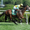 Strong Impact win the 2013 Fiddlers Patriot Stakes.<br /> Coglianese Photos