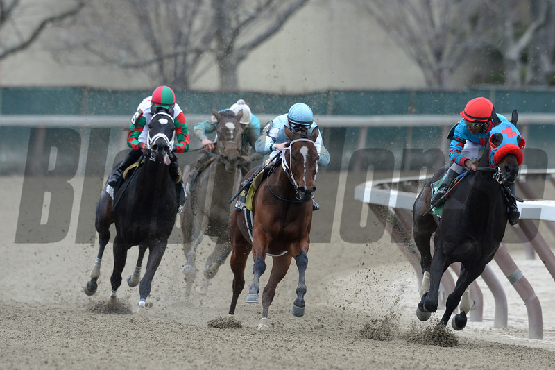 Cluster of Stars wins the 2013 Distaff Handicap.<br /> Coglianese Photos/Joe Labozzetta