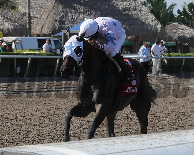 Black Diamond Cat wins the 2013 Montbrook.<br /> Coglianese Photos/Kenny Martin