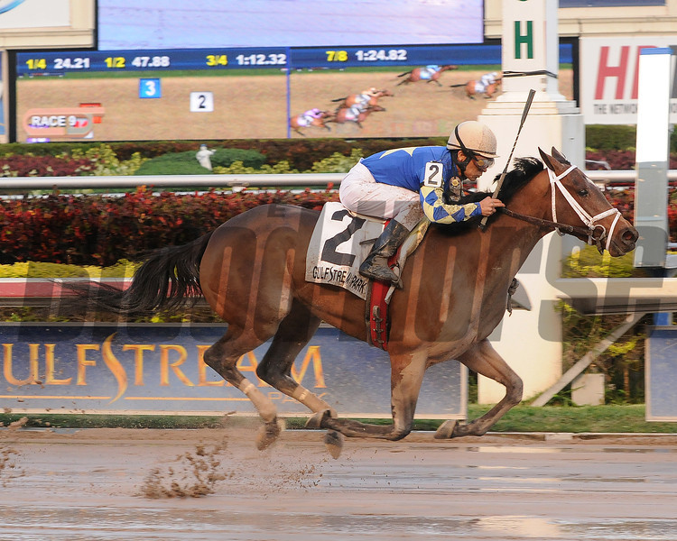 Candy Kitty wins the 2013 Wait a While.<br /> Coglianese Photos/Lauren King