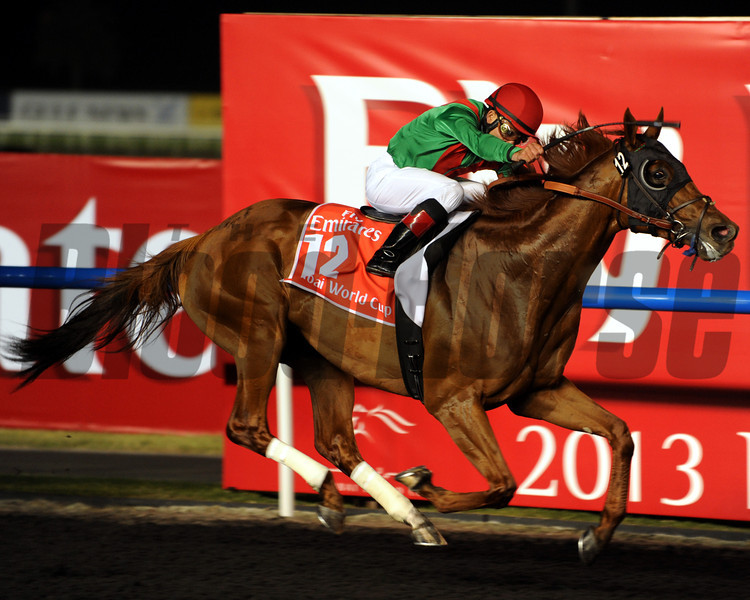 Animal Kingdom wins the 2013 Dubai World Cup.<br /> Photo  by Dave Harmon